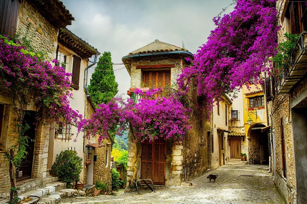 Преимущества покупки недвижимости на юге Франции